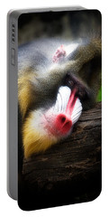 Mandrill Baboon Portable Battery Charger