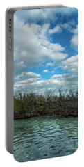 Portable Battery Charger featuring the photograph Mangroves In Key West Damaged By The Storm by Bob Slitzan