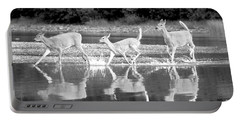 Portable Battery Charger featuring the photograph Many Glacier Deer 1 by Adam Jewell