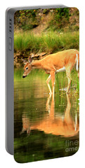 Portable Battery Charger featuring the photograph Deer Reflections In Fishercap by Adam Jewell