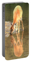 Portable Battery Charger featuring the photograph Deer Reflections by Adam Jewell