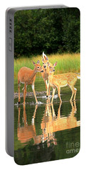 Many Glacier Family Portrait Portable Battery Charger by Adam Jewell