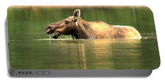 Many Glacier Moose 1 Portable Battery Charger by Adam Jewell