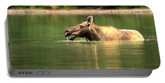 Portable Battery Charger featuring the photograph Many Glacier Moose 2 by Adam Jewell