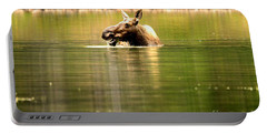 Portable Battery Charger featuring the photograph Many Glacier Moose 3 by Adam Jewell