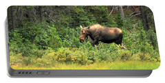 Many Glacier Moose 5 Portable Battery Charger by Adam Jewell