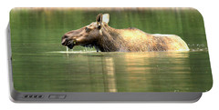 Many Glacier Moose 7 Portable Battery Charger by Adam Jewell