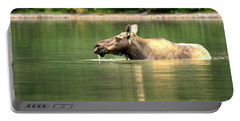 Many Glacier Moose 8 Portable Battery Charger by Adam Jewell