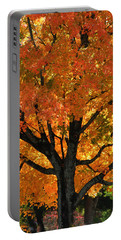 Maple Hill Maple In Autumn Portable Battery Charger
