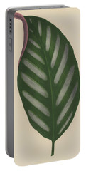 Maranta Porteana Portable Battery Charger by English School