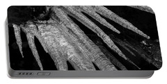 Portable Battery Charger featuring the photograph March Icicles 3 by Mike Eingle