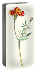 Portable Battery Charger featuring the painting Marigold by Heidi Kriel