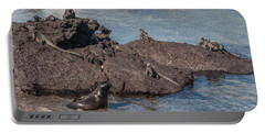 Marine Iguanas And Sealion Pup At Punta Espinoza Fernandina Island Galapagos Islands Portable Battery Charger