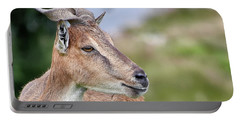 Markhor Portable Battery Charger