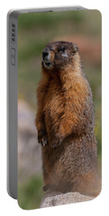 Portable Battery Charger featuring the photograph Marmot by Gary Lengyel