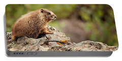 Portable Battery Charger featuring the photograph Marmot by Lana Trussell