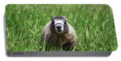 Portable Battery Charger featuring the photograph Marmot Pup by Alyce Taylor