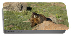 Marmot Portable Battery Charger