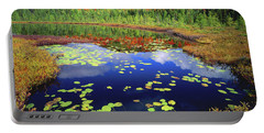 Marsh Pond Portable Battery Charger