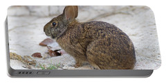 Marsh Rabbit On Dune Portable Battery Charger
