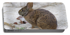 Marsh Rabbit On Dune Portable Battery Charger