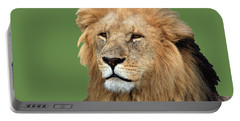 Masai Mara Lion Portrait    Portable Battery Charger