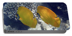 Masked Butterflyfish Sahl Hasheesh 2 Portable Battery Charger