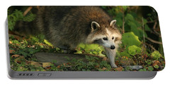 Portable Battery Charger featuring the photograph Maskless Raccoon by Doris Potter