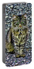 Mattie The Main Coon Cat Portable Battery Charger