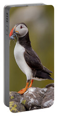 May Puffin Portable Battery Charger