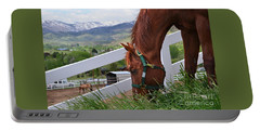 Mccool Grazing Portable Battery Charger