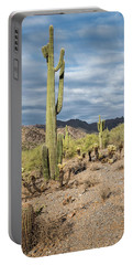 Mcdowell Cactus Portable Battery Charger