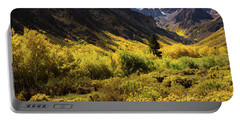Portable Battery Charger featuring the photograph Mcgee Creek Alive With Color by John Hight