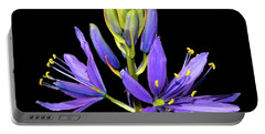Meadow Hyacinth 002 Portable Battery Charger by George Bostian