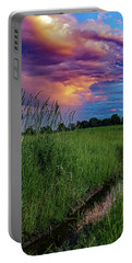 Portable Battery Charger featuring the photograph Meadow Lark by Kendall McKernon