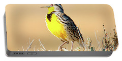 Meadow Lark Portable Battery Charger