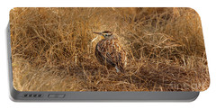 Meadowlark Hiding In Grass Portable Battery Charger by Robert Frederick