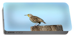Meadowlark Roost Portable Battery Charger