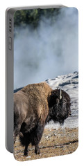 Portable Battery Charger featuring the photograph Meandering by Colleen Coccia