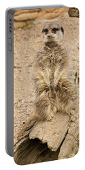 Portable Battery Charger featuring the photograph Meerkat by Chris Boulton