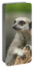 Meerkat Model Portable Battery Charger