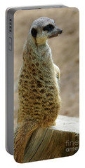 Meerkat Portrait Portable Battery Charger by Carlos Caetano