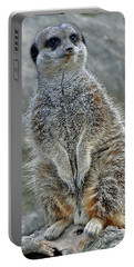 Meerkat Poses Portable Battery Charger