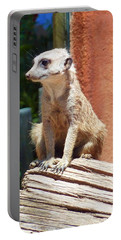Meerkat Sentry Portable Battery Charger