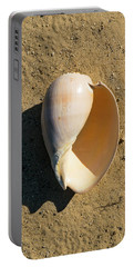 Portable Battery Charger featuring the photograph Melon Shell Voluta Aethiopica by Frank Wilson