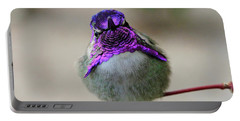 Metalic Hummingbird Portable Battery Charger by Shoal Hollingsworth