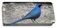 Portable Battery Charger featuring the photograph Meve's Starling by Betty-Anne McDonald