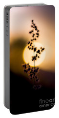 Mexican Desert Sunset Portable Battery Charger