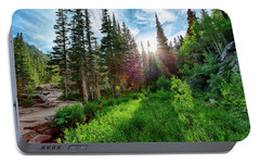 Portable Battery Charger featuring the photograph Midsummer Dream by David Chandler