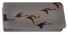 Migrating Swans Portable Battery Charger